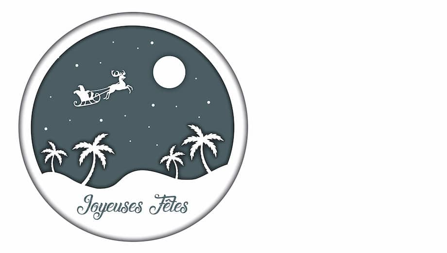 Joyeuses Fêtes et Belle Année 2021 !